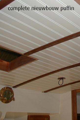 WB puffinplafond